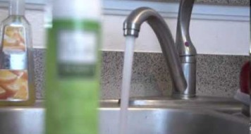 Importance of Hygiene